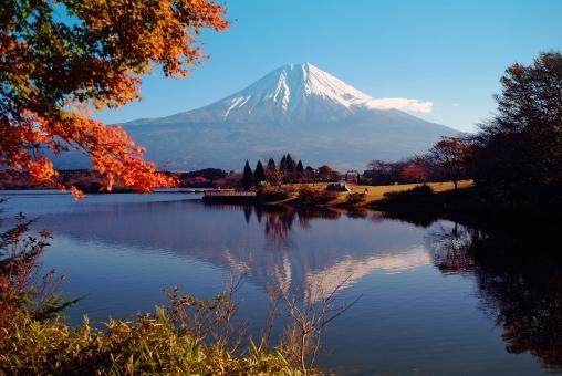 脂肪吸引を受けるならここ!静岡でおすすめしたい人気クリニック5選
